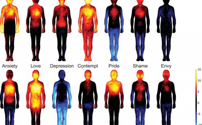 الخرائط الجسدية للحلات النفسية