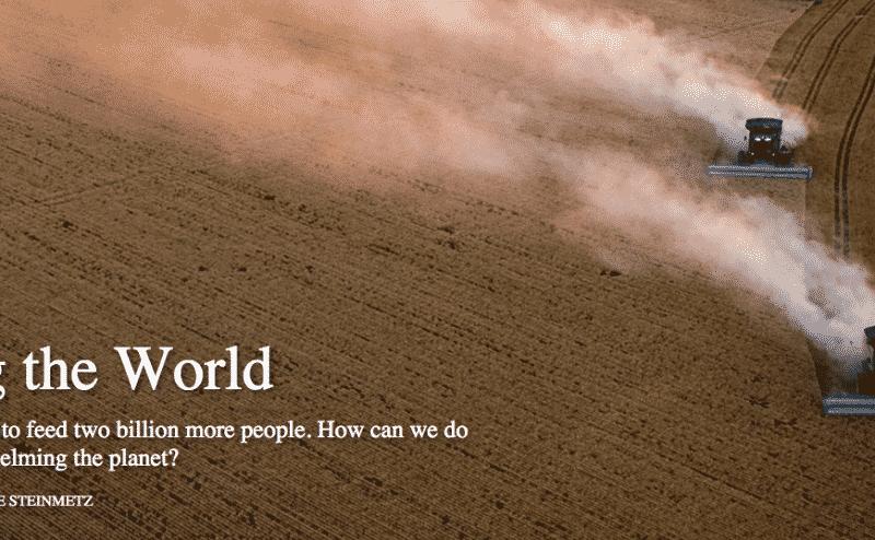 خمس خطوات لضمان الأمن الغذائي عالميا