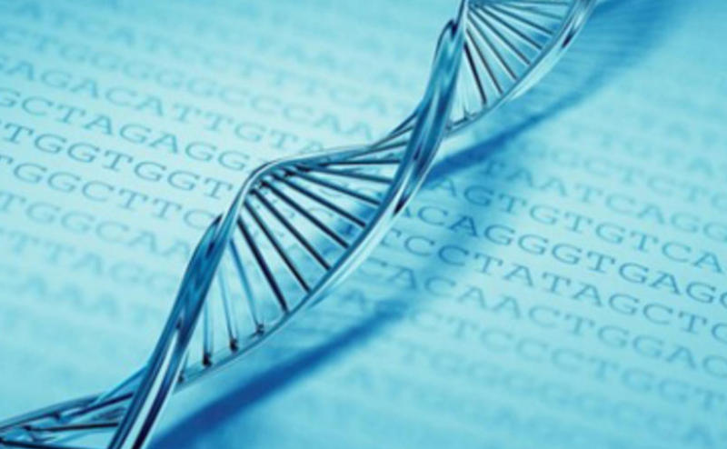 صورة اليوم: استخدام الـ(DNA) كوسيلة تخزين