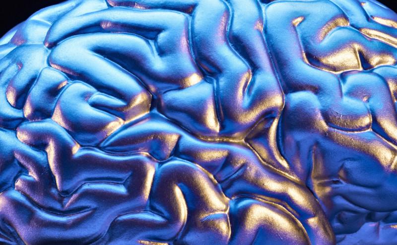 10 أشياء يومية للعناية بالدماغ