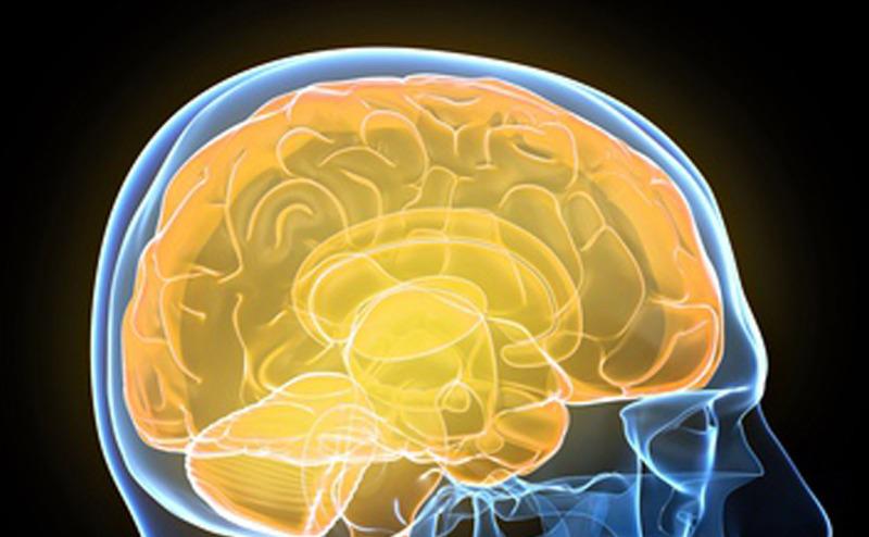 تحفيز الدماغ الكهربائي يعزز اليقظة لمدة طويلة
