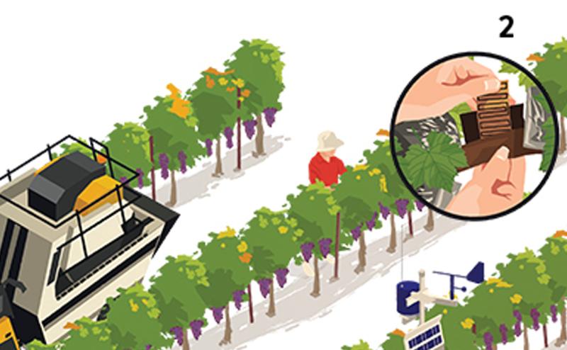 تكنولوجيا الزراعة الحديثة تتفوق على الزراعة باليد