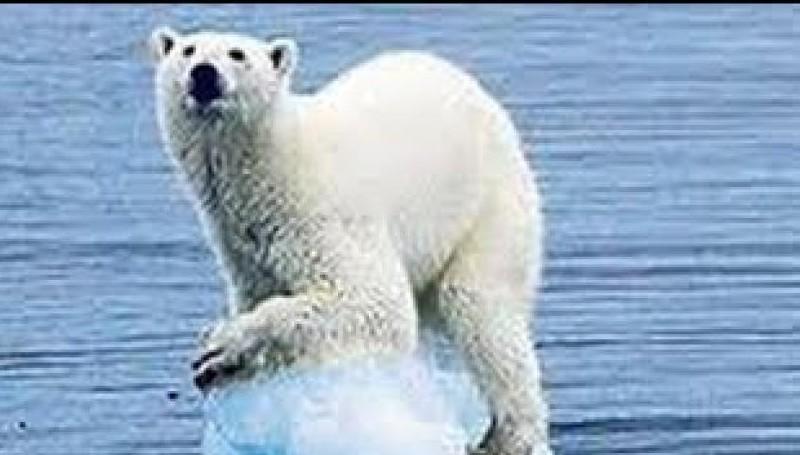 تطورات التغيّر المناخي