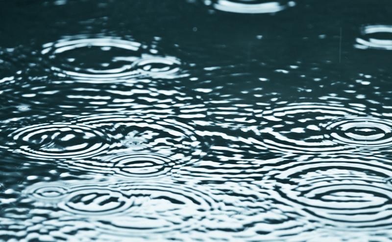 كاميرا فائقة السرعة تستطيع التقاط رائحة ما بعد المطر