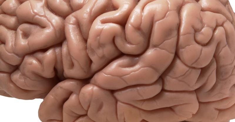مناطق الاختيار في الدماغ ترتبط بالإضطرابات الدماغية