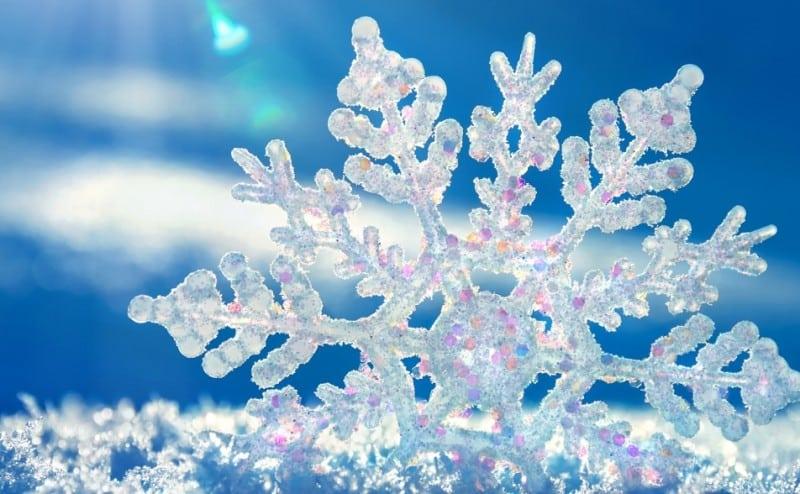 يا تُرى كيف تبدو كرات الثلج؟!