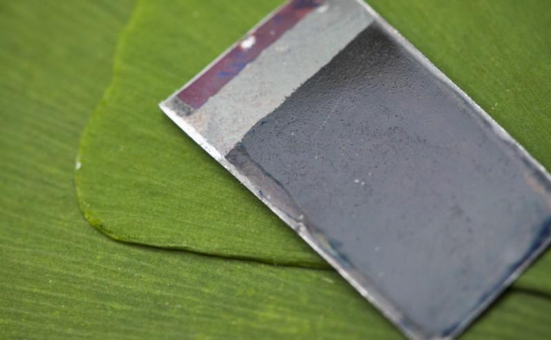 تحويل ضوء الشمس إلى وقود سائل باستخدام البكتيريا