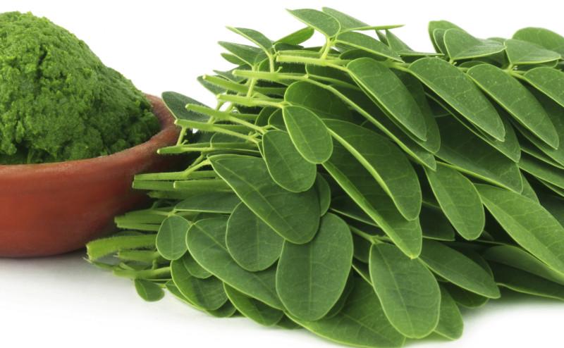 لماذا يجب أن تضيف المورينغا إلى نظامك الغذائي