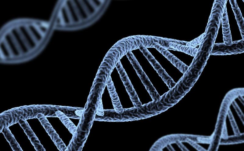 الجينات التي تؤثر بالبشر هي الموروثة عن الآباء