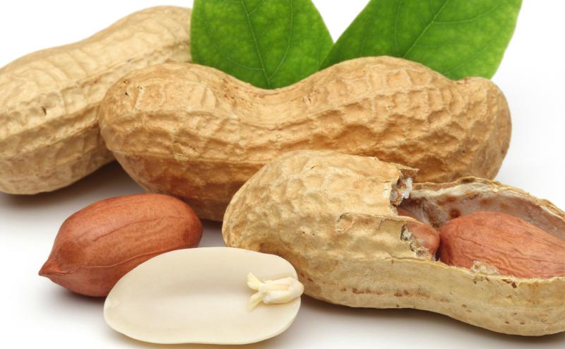 تناول الفول السوداني في سن مبكر يحمي من الإصابة بحساسيته