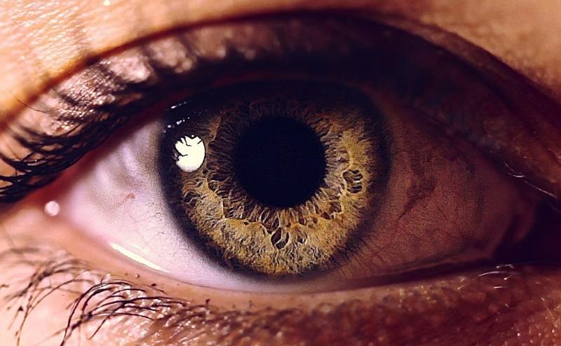 العين هي نافذة الجسم ومؤشر على صحته