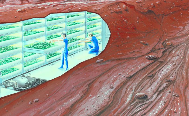 كيف يمكن للزراعة على المريخ أن تساعد على تحسين الزراعة على الأرض