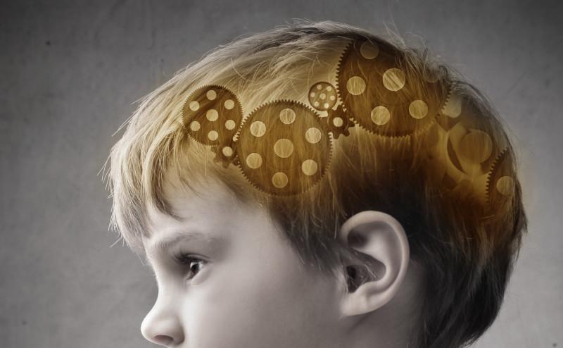 كيف يتعرف الدماغ على الوجوه باستخدام أقل قدر ممكن من المعلومات