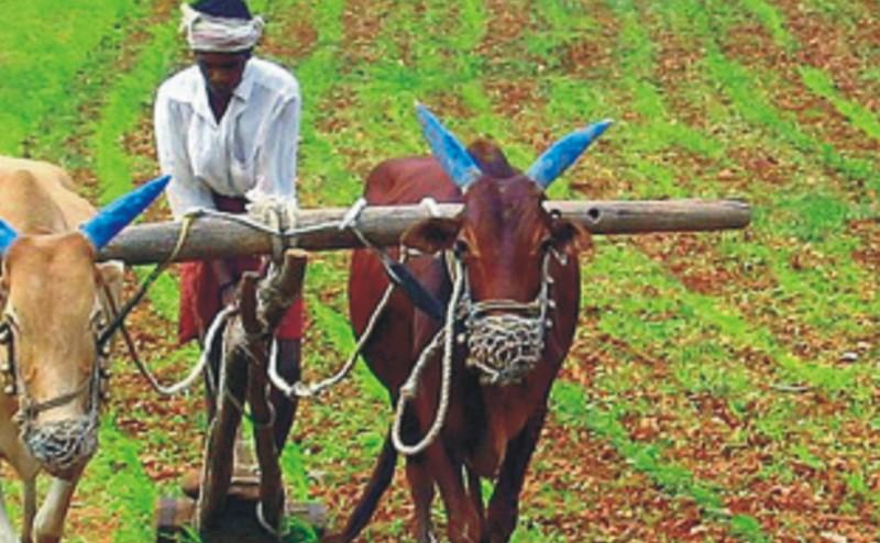 الزراعة البيوديناميكية