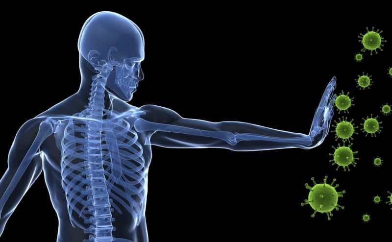ما الذي يجب علينا تناوله لتقوية جهازنا المناعي؟