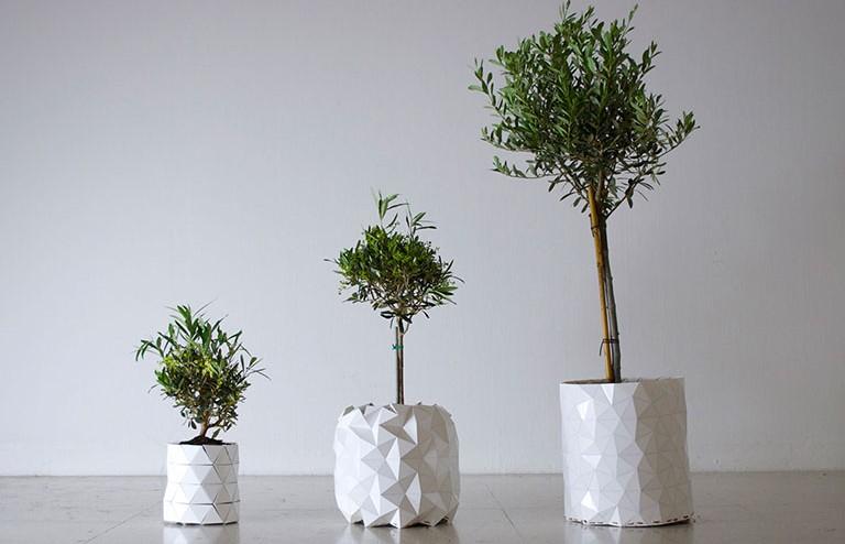 أهلًا بك في عالم التكنولوجيا المدهشة: إصيص هندسي ينمو مع النباتات