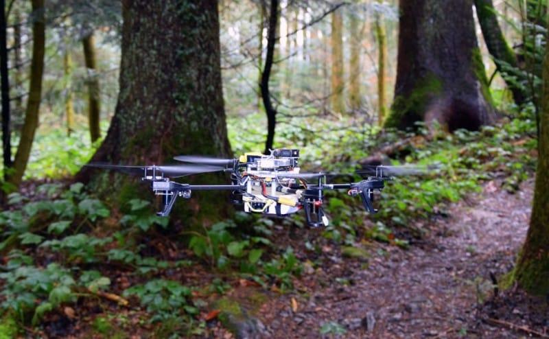 لا تخف الضياع: طائرات دون طيار تبحث عن التائهين في الغابات