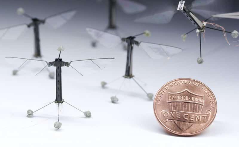 تستعين بالكهرباء الاستاتيكية لتنافس الحشرات: طائرات دون طيار لأوقات الكوارث