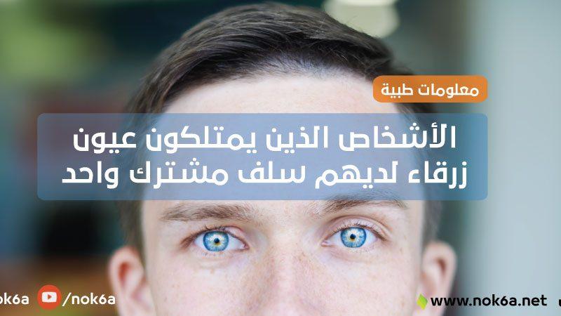 الأشخاص الذين يمتلكون عيون زرقاء لديهم سلف واحد مشترك