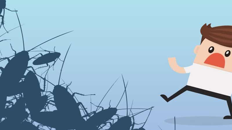 لماذا نخاف من الصراصير؟