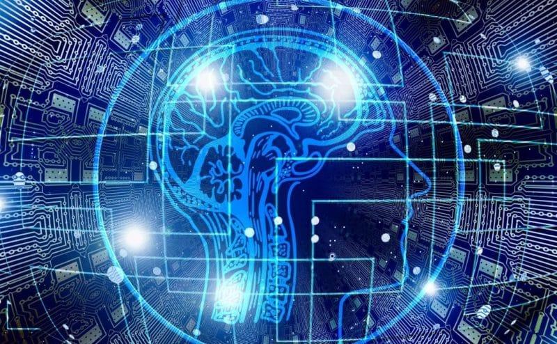 التخزين والتوريد: كيف يقوم الدماغ بتوفير الوقت
