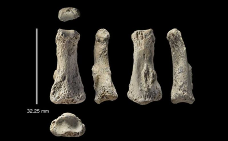 أثر بشري (متحجر) عمره 86 ألف عام يكشف عمق حضارة الجزيرة العربية