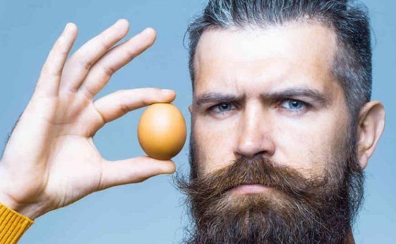 هل لتناول البيض فوائد صحية حقيقية، وهل يجب أن نتناوله بإستمرار؟