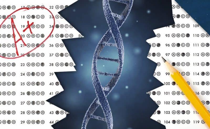 كيف يمكن للجينات أن تؤثر على التحصيل الاكاديمي