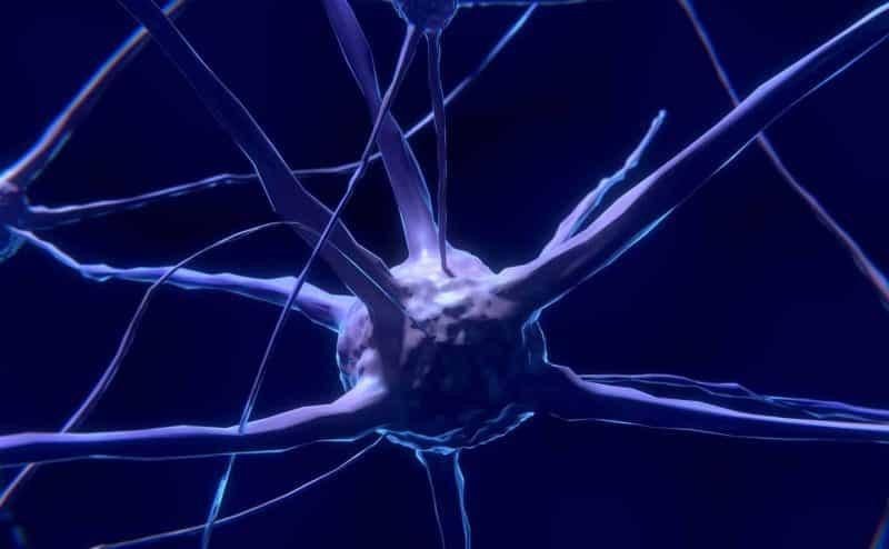 علاج الأمراض الدماغية والنفسية من خلال التعديل على الجينات