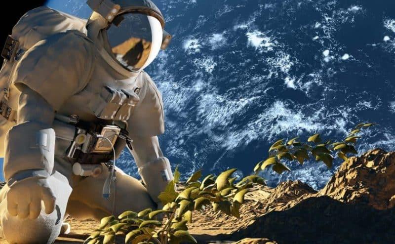 هل عثر علماء الأحياء على الهرمون الذي يجعل الزراعة الفضائية ممكنة