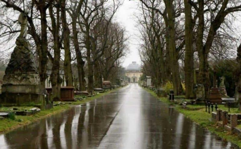 علميًا: ما سبب الرائحة المنعشة بعد سقوط المطر؟