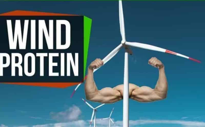 كيف يسعى المهندسين لتحويل طاقة الرياح إلى بروتين؟
