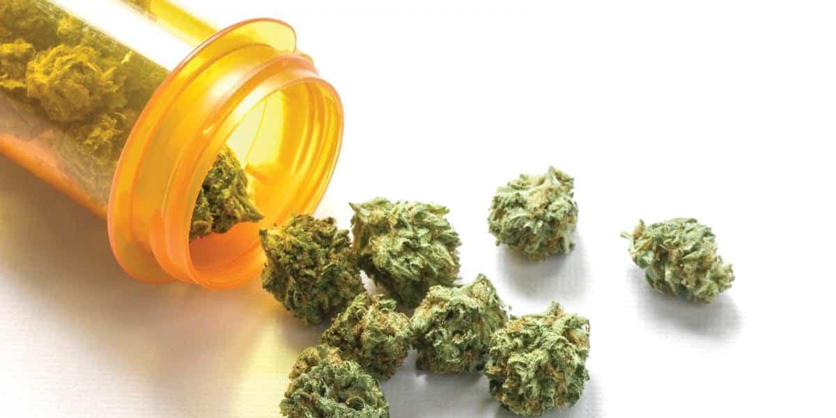 الماريجوانا الطبية متاحة في تايلاند