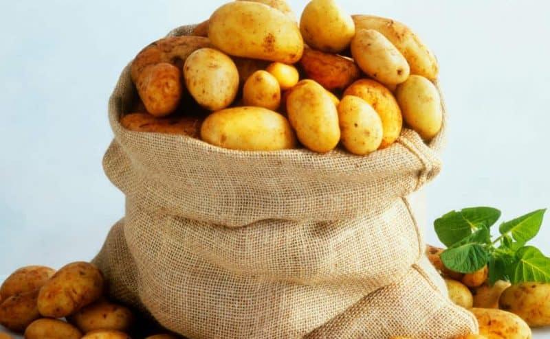 """البطاطس لديها شكل من """"الاكتئاب""""..ولكن العلماء لديهم فكرة لعلاجها"""