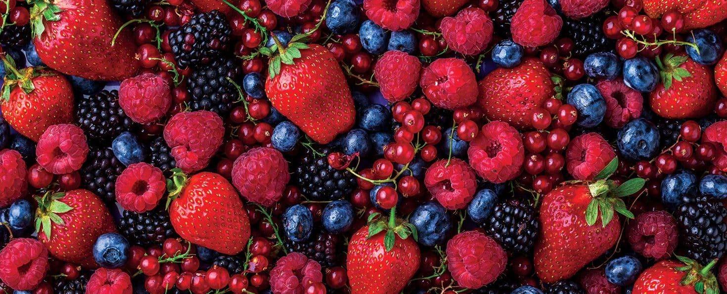 فاكهة تحرق الدهون