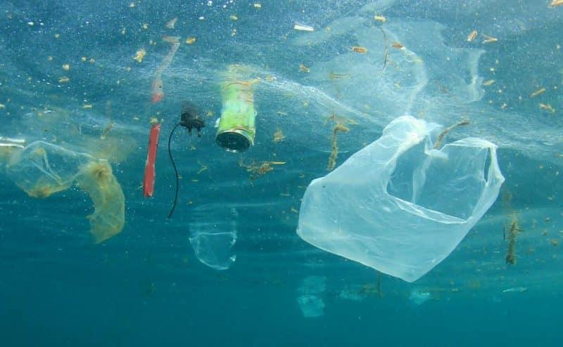 ربما يخشون الفضيحة … قوة أداة الفضح في مكافحة النفايات البلاستيكية