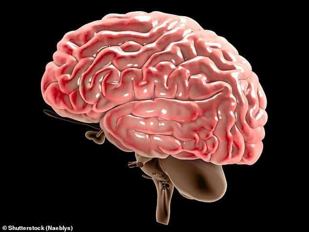 تناول مضادات الاكتئاب بعد سن الخمسين يعرضك ثلاث مرات أكثر للإصابة بالخرف