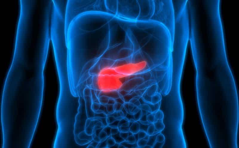 جزيء السكر CA19-9 يلعب دورا في تطور سرطان البنكرياس