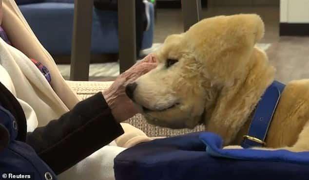 كلب روبوت سيكون أفضل صديق لمرضى الزهايمر