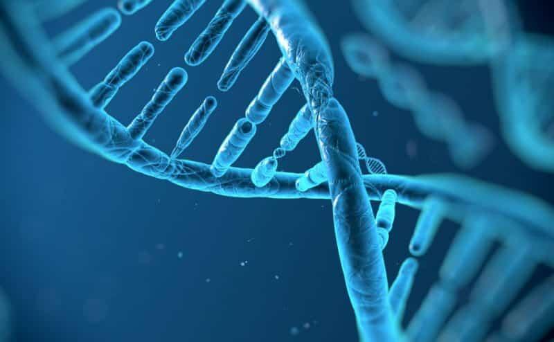 العلاج الجيني: متطلباته، أدواته ومراحله.