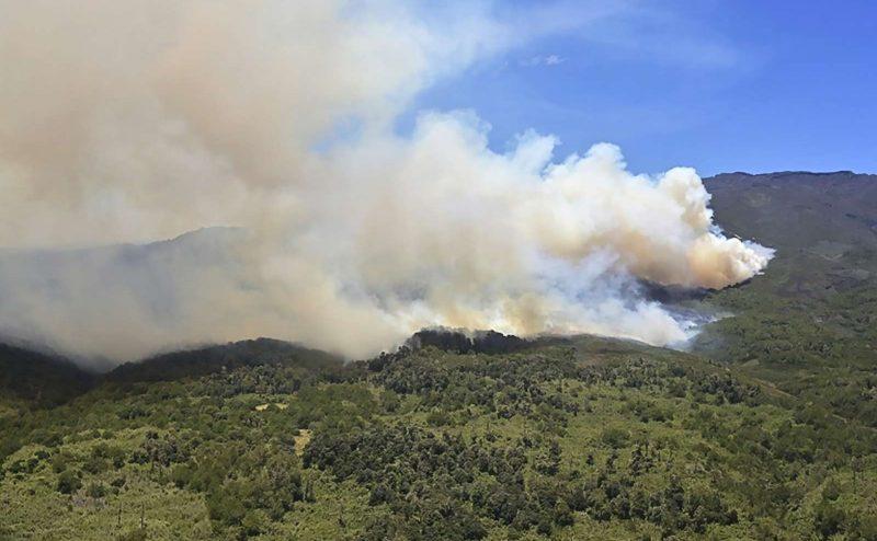 الحرائق في إفريقيا أكثر عددا من الأمازون ولكن أسبابها تختلف