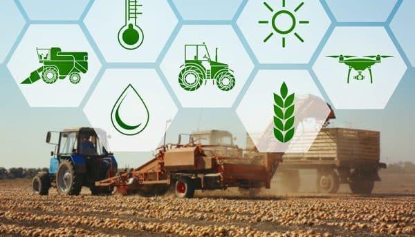 نموذج الجزائر: كيف يمكن للزراعة الذكية أن تغير العالم؟
