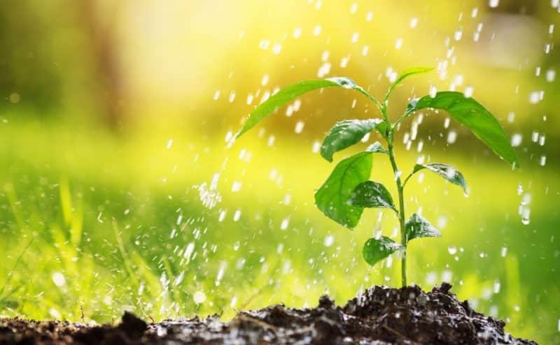 أثر المناخ على التربة .. تغير المناخ يقلل من قدرة التربة على امتصاص الماء