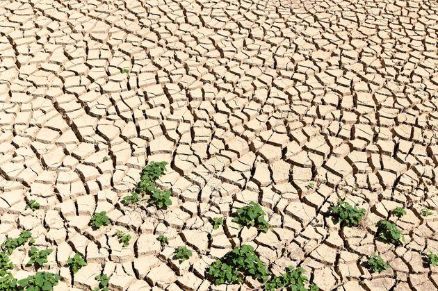 لماذا فشلت تونس في الحصول على 20 مليار دولار للتخفيف من آثار تغير المناخ؟