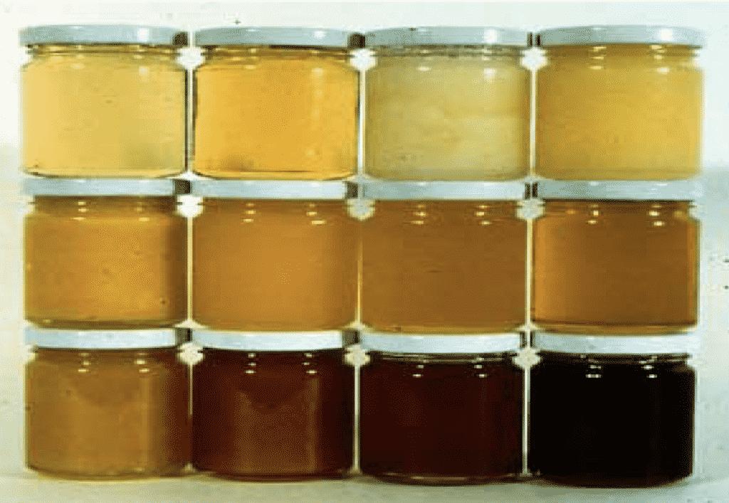 أنواع العسل المختلفة