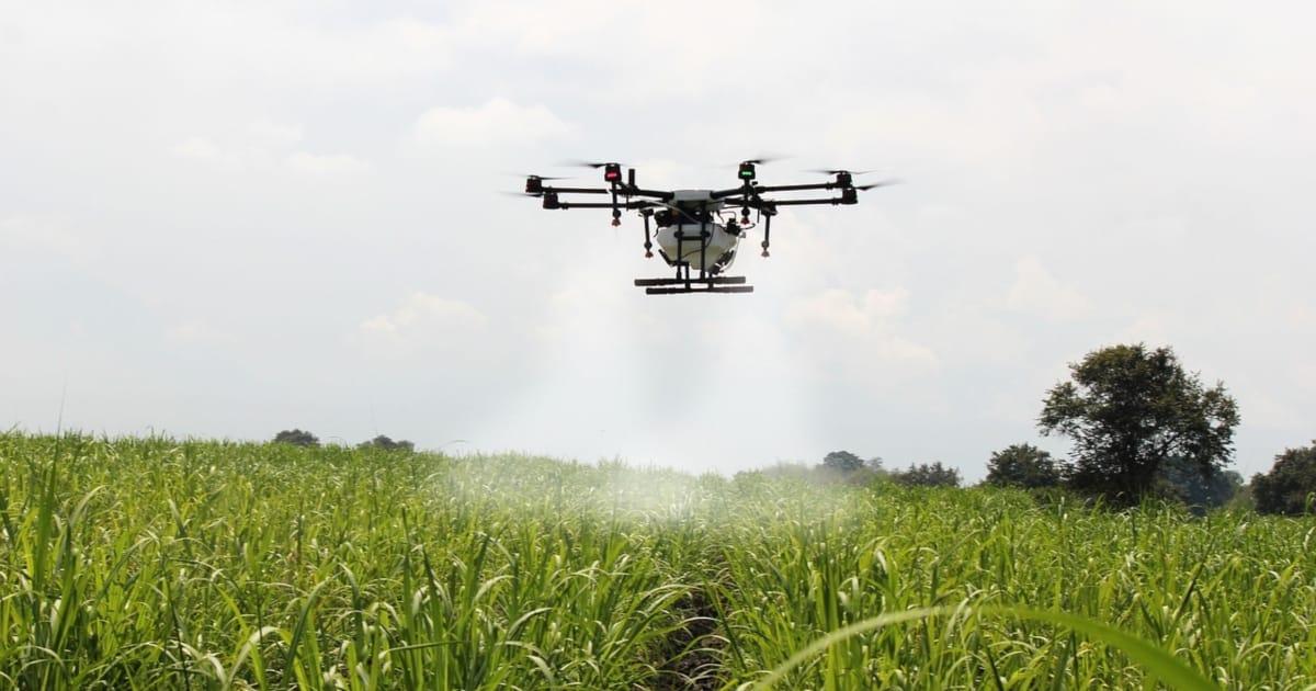 الزراعة بالطائرات المسيرة