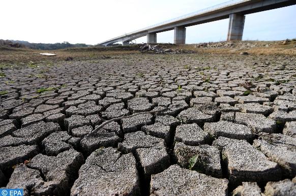 لنتعلم من تجربتهم: كيف تحاول جنوب أفريقيا الحد من الجفاف؟