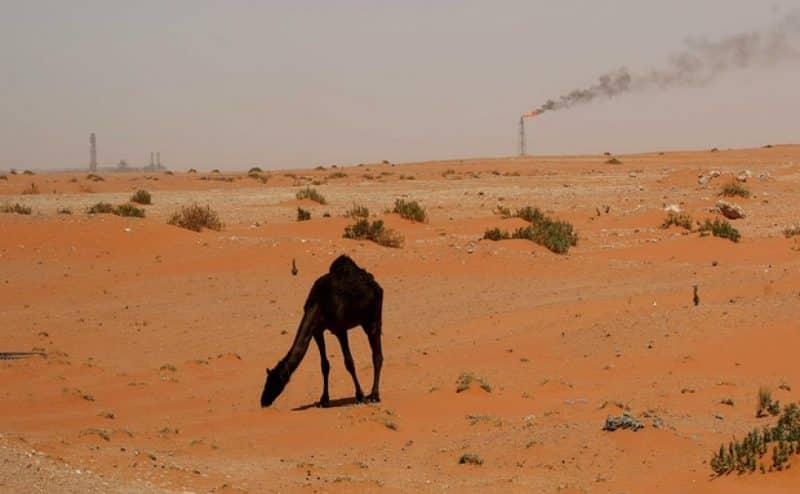 هذا ما يفعله الإحتباس الحراري في السعودية .. وهذه إجراءات الحكومة في مكافحة تغير المناخ