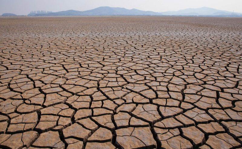 مؤشر الأداء البيئي (EPI) يصنف السعودية ضمن أسوأ 200 دولة