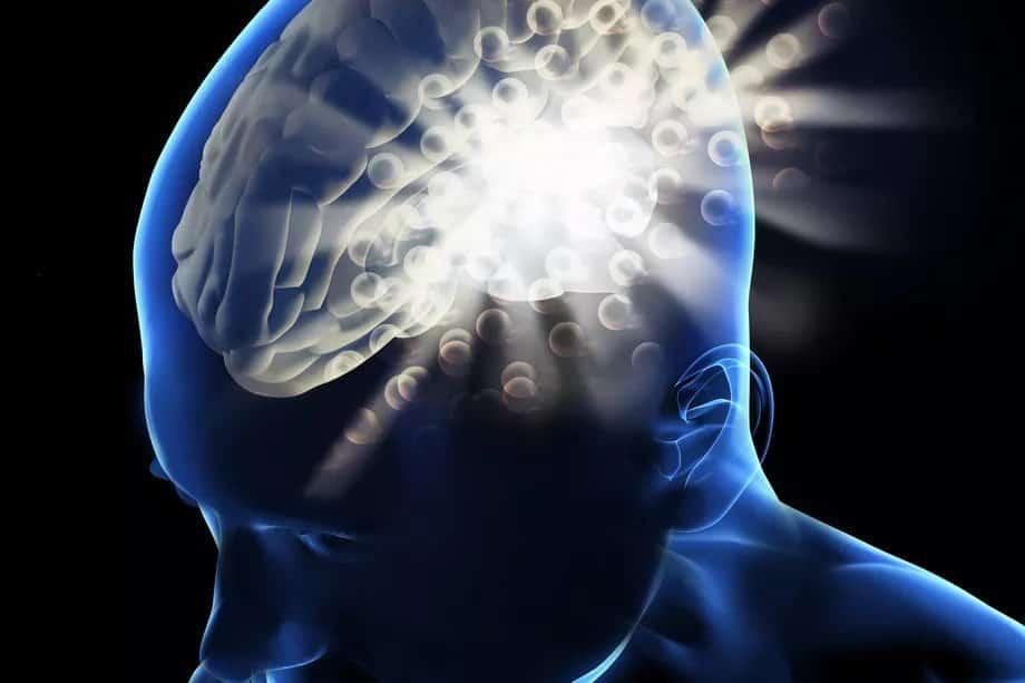 ما الذي يمكن أن يعلمنا الذكاء الاصطناعي عن الدماغ البشري؟